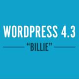 WordPress v4.3 «Billie» // Une mise en page tout au clavier
